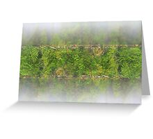 Forest and Fog Greeting Card