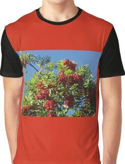 Red Rowan Berries against a Bright Blue Sky Graphic T-Shirt