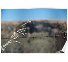 Rusty fencing Poster