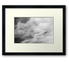 A Bird Flew Through the Sky Thinking of Life Framed Print
