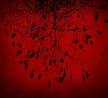 Burning Red Tree by bassphotography