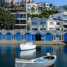 Oriental Bay marina, Wellington, N.Z. by Mike Warman
