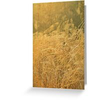 Golden summer Greeting Card