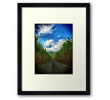 Road sugars Framed Print