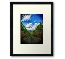 Road sugars Framed Print