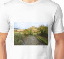 Mosedale Beck Unisex T-Shirt