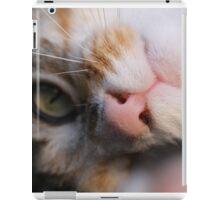 Playful Kitty iPad Case/Skin