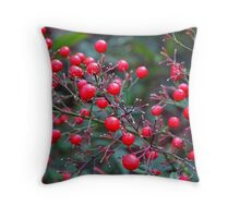 Red Red Throw Pillow