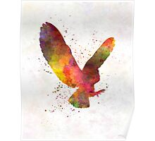 Barn Owl 02 in watercolor Poster