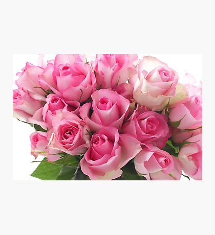 Pink Roses Bouquet Photographic Print