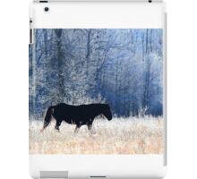 Horse and Owl iPad Case/Skin