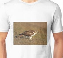 Red-tailed Hawk - juvenile T-Shirt