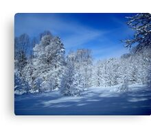 Winter Trees ^ Canvas Print