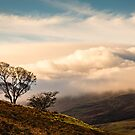 Cloud Covered Cheviot by David Lewins
