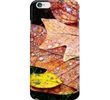 Autumn leaves and raindrops iPhone Case/Skin