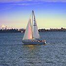 Sailing Away ~ San Diego, California by Marie Sharp