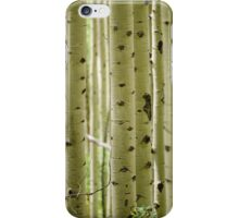 Aspen Trees iPhone Case/Skin