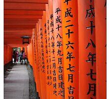 Japanese Toriis by livjj