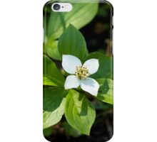 Peace Blossom iPhone Case/Skin