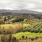 Arezzo Hills View From San Donato Belvedere by savage1