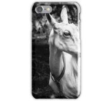 portrait of a goat iPhone Case/Skin