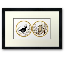 Couple of Blackbirds Framed Print