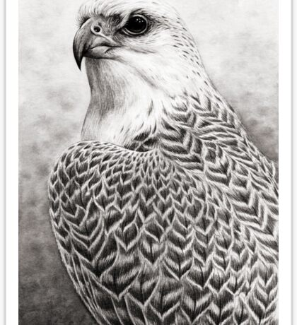 The Gyrfalcon Sticker