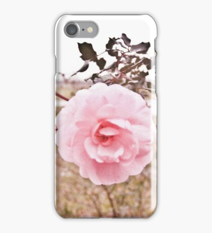 Vintage Rose digital photography iPhone Case/Skin