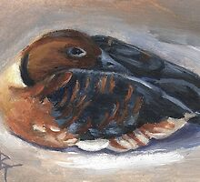 Wandering Whistling Duck aceo by Brenda Thour