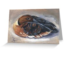 Wandering Whistling Duck aceo Greeting Card