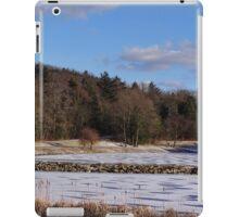 Finally Freezing iPad Case/Skin