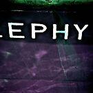 ZEPHYR by Bob Wall