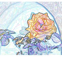 Abstract flowers drawing in pastel colors Take 1 Photographic Print