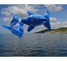 Flying Fish Over Lyme Photographic Print