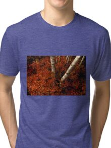 Birches and Red Bushes, OCT 25, 2013 Tri-blend T-Shirt