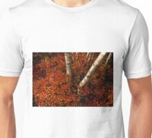 Birches and Red Bushes, OCT 25, 2013 Unisex T-Shirt