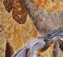 Wedge Tailed Eagle - bird of prey - Australia Sticker