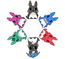 My Rainbow  Totoro Photographic Print