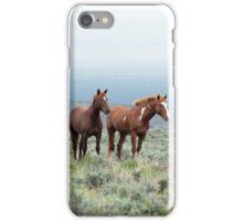 Wild Horses - South Steens Herd No. 1 iPhone Case/Skin