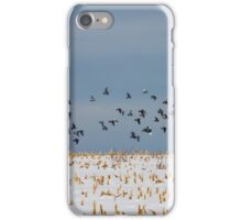 Flying Pigeons iPhone Case/Skin