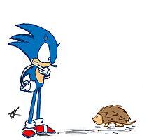 Hedgehogs by Kalpakoff