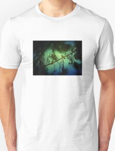 Pair of Flickers T-Shirt