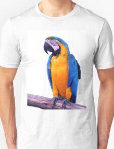 Perroquet Unisex T-Shirt