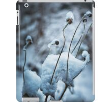 Snow Forms iPad Case/Skin