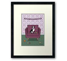 Boston Terrier Sitting on Purple Chair Framed Print