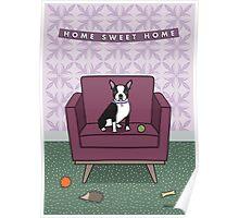 Boston Terrier Sitting on Purple Chair Poster