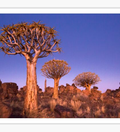Dusk in the Quiver Tree Forest Sticker