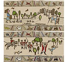 Part 2 of Outlandish Panels (Gabeaux Tapestry) Photographic Print