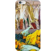 Gourds Everywhere iPhone Case/Skin