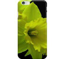 Daffodils Rejoicing iPhone Case/Skin